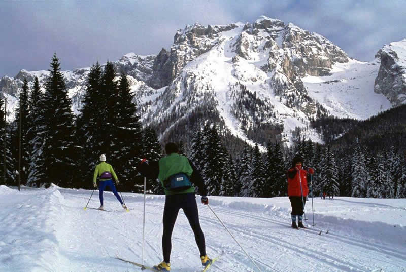 Equipment Rental: Cross-country skiing in Madonna di Campiglio